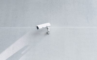 THE AMENDMENTS OF THE REGULATION OF THE SURVEILLANCE SYSTEM